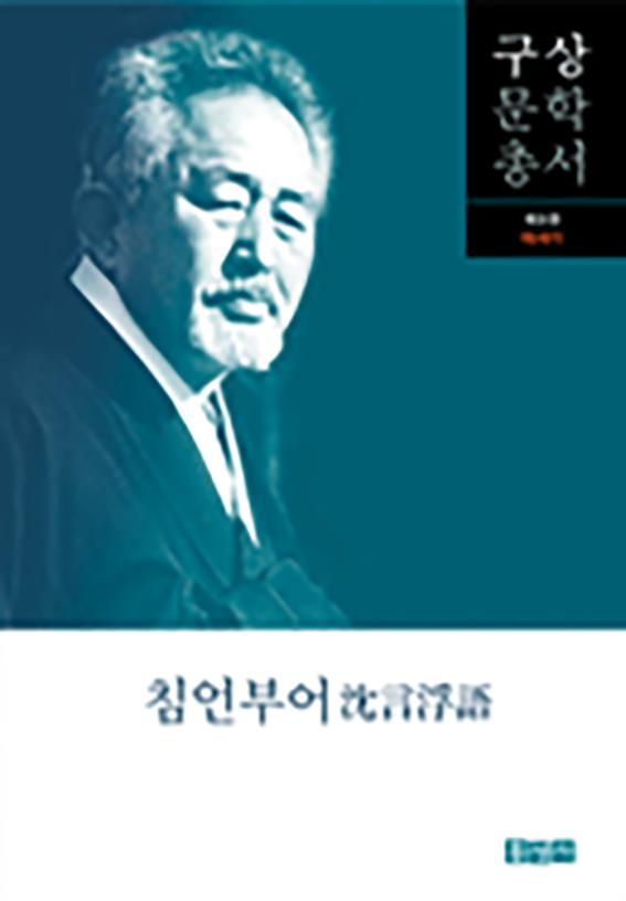 구상문학총서 제9권 침언부어沈言浮語